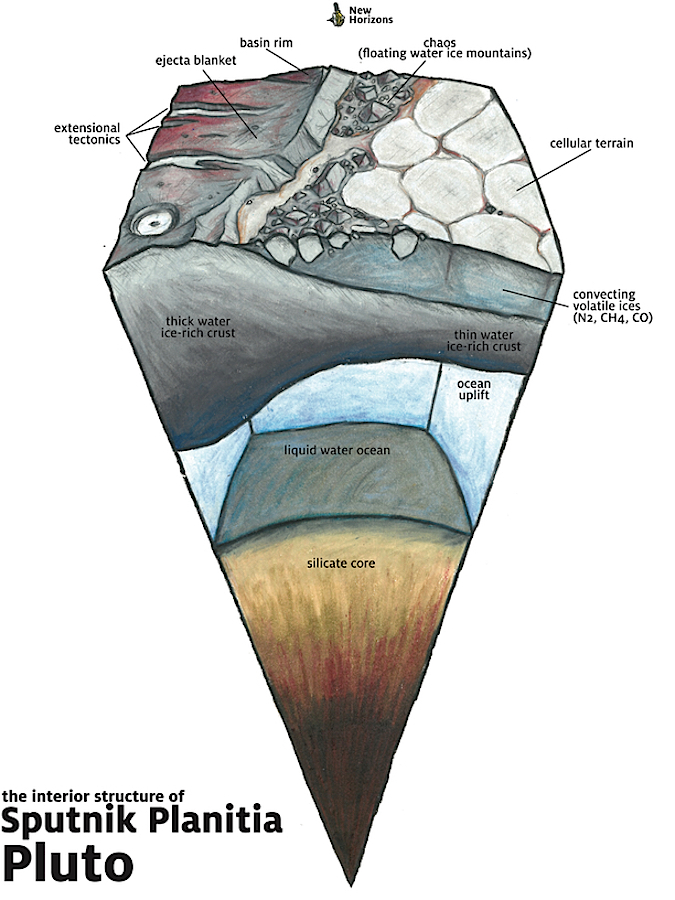 The geologic structure beneath the surface of Sputnik Planitia, which is believed to be an ancient impact basin that has since filled in with volatile ices. On Pluto, it is possible that the thinned crust is overlying a liquid water ocean. Credit: James Keane/University of Arizona