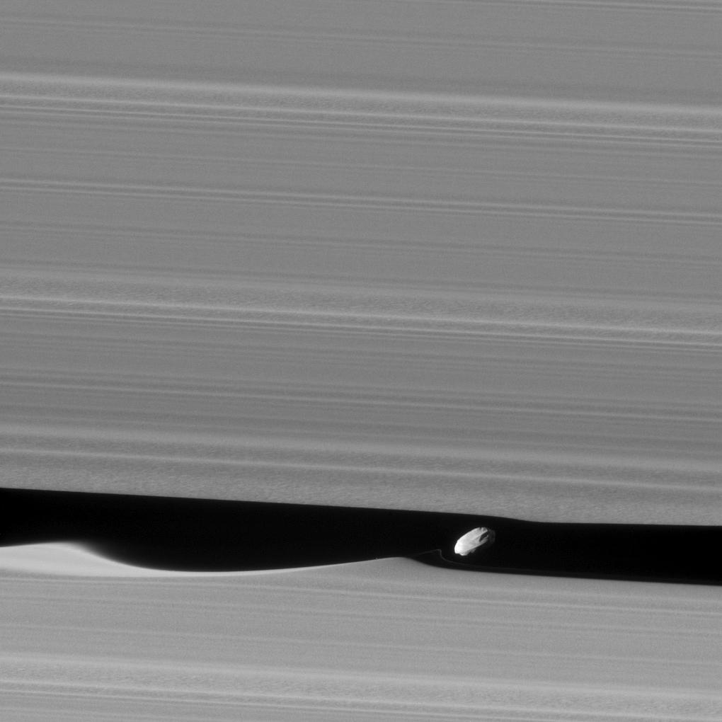 Saturn's Moon Daphnis Creates Spectacular Ripples in Saturn's Rings